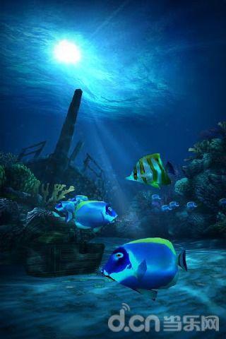 高清海底动态壁纸